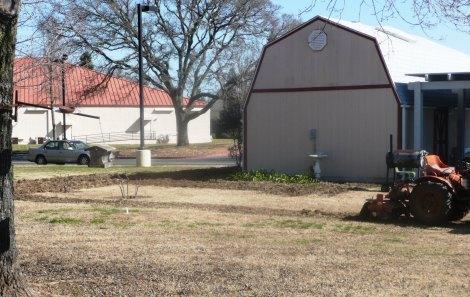 Feb 10 grass