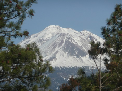 Mar 22 13 mt shasta