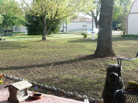 April 3, seeing green