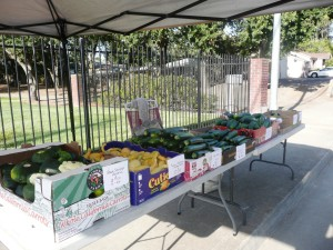 july1412veggie stand 002