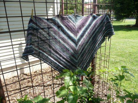 may92012  alpaca sox  ready to block 001